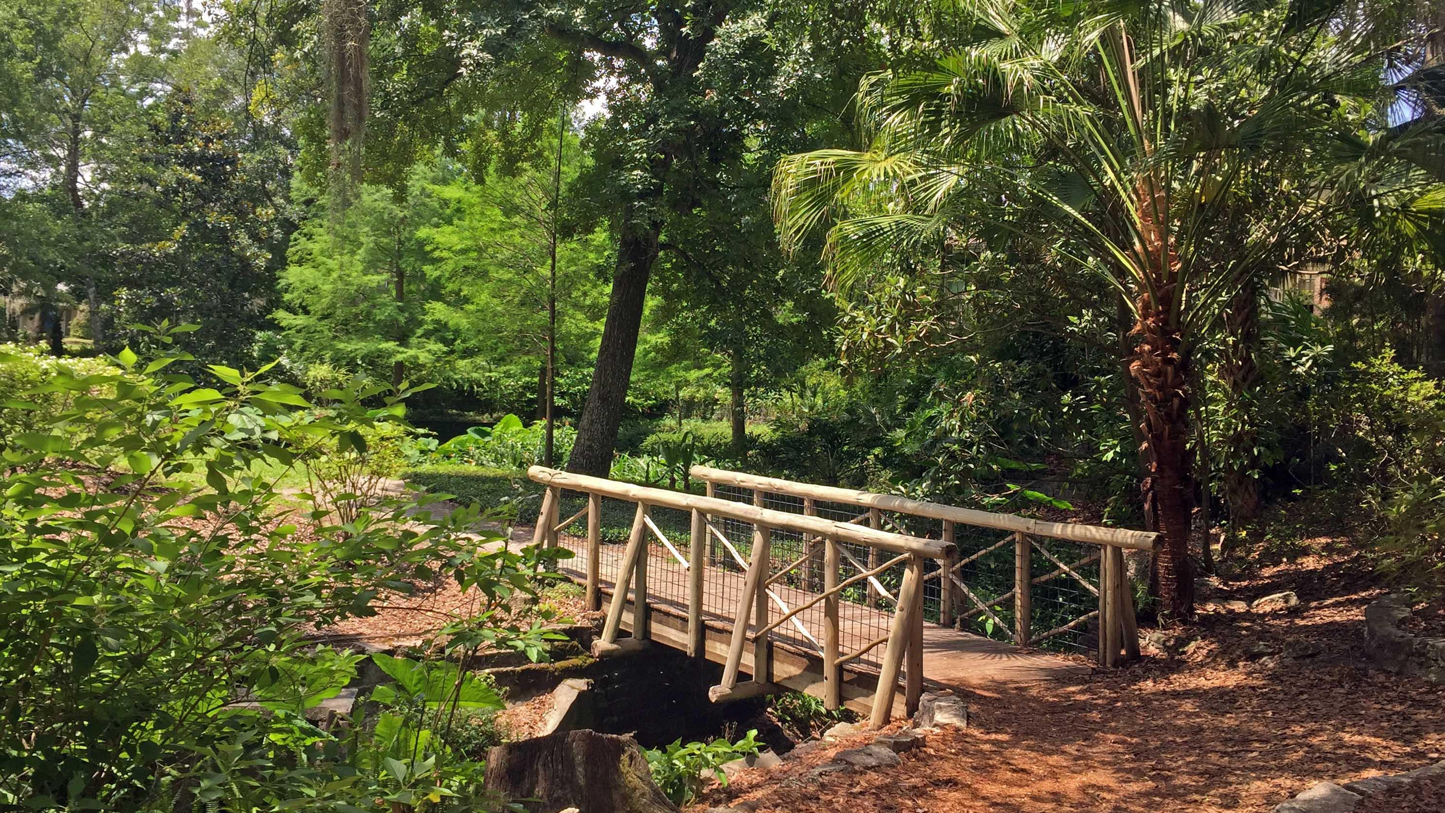 Dickson Azelea Park