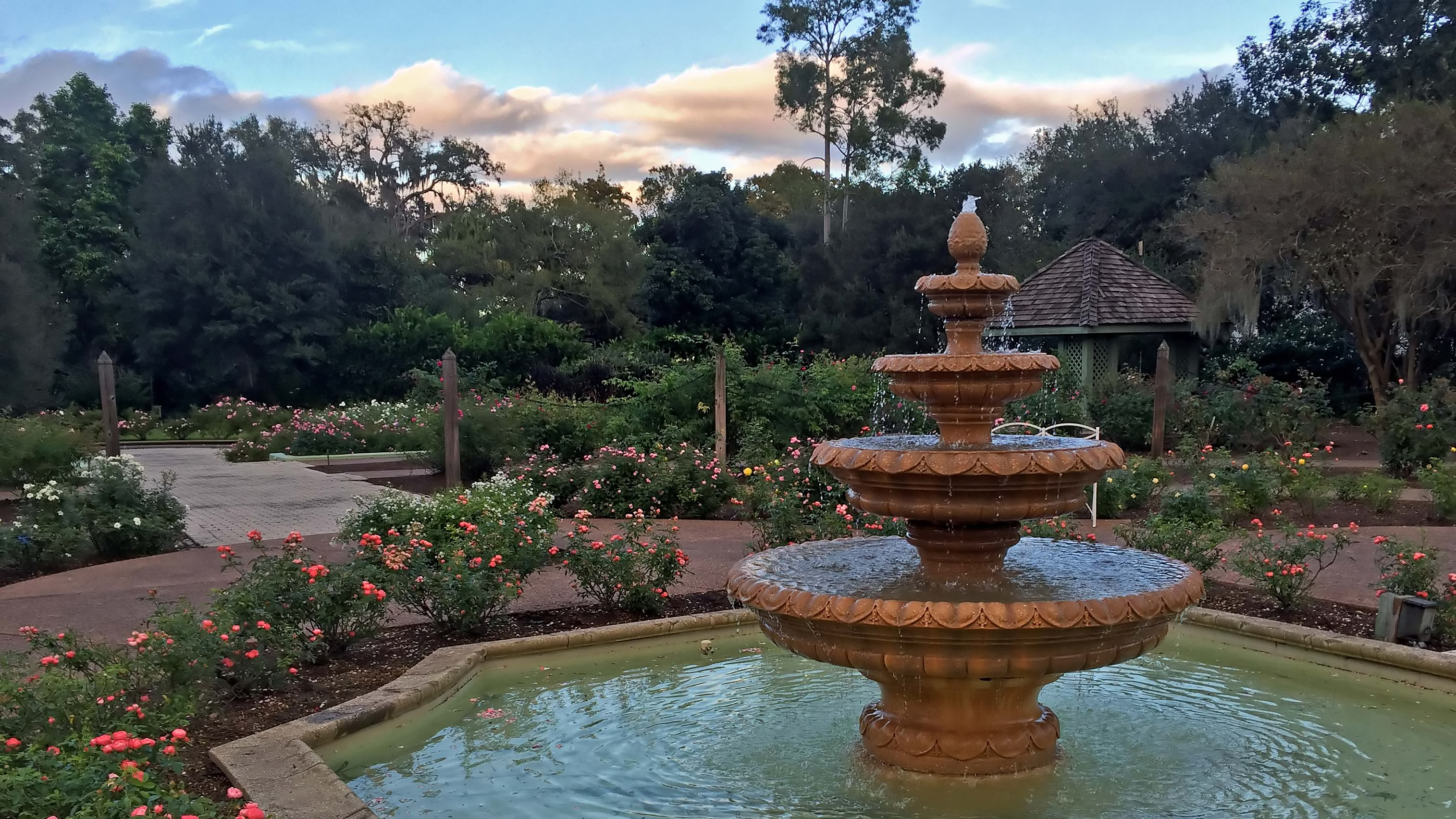 13 Best Images About Leu Gardens Weddings On Pinterest: Best Places To Take Photographs In Orlando